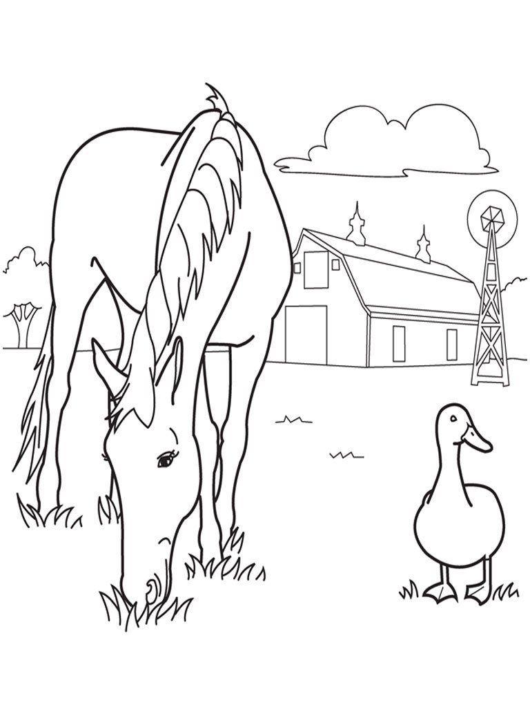 caballo pastando imprimir y colorear manualidades de caballos