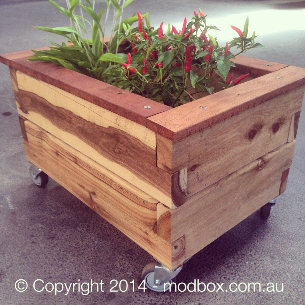 Modbox Piccolo On Wheels Planter Box Wood Planters Garden Bo