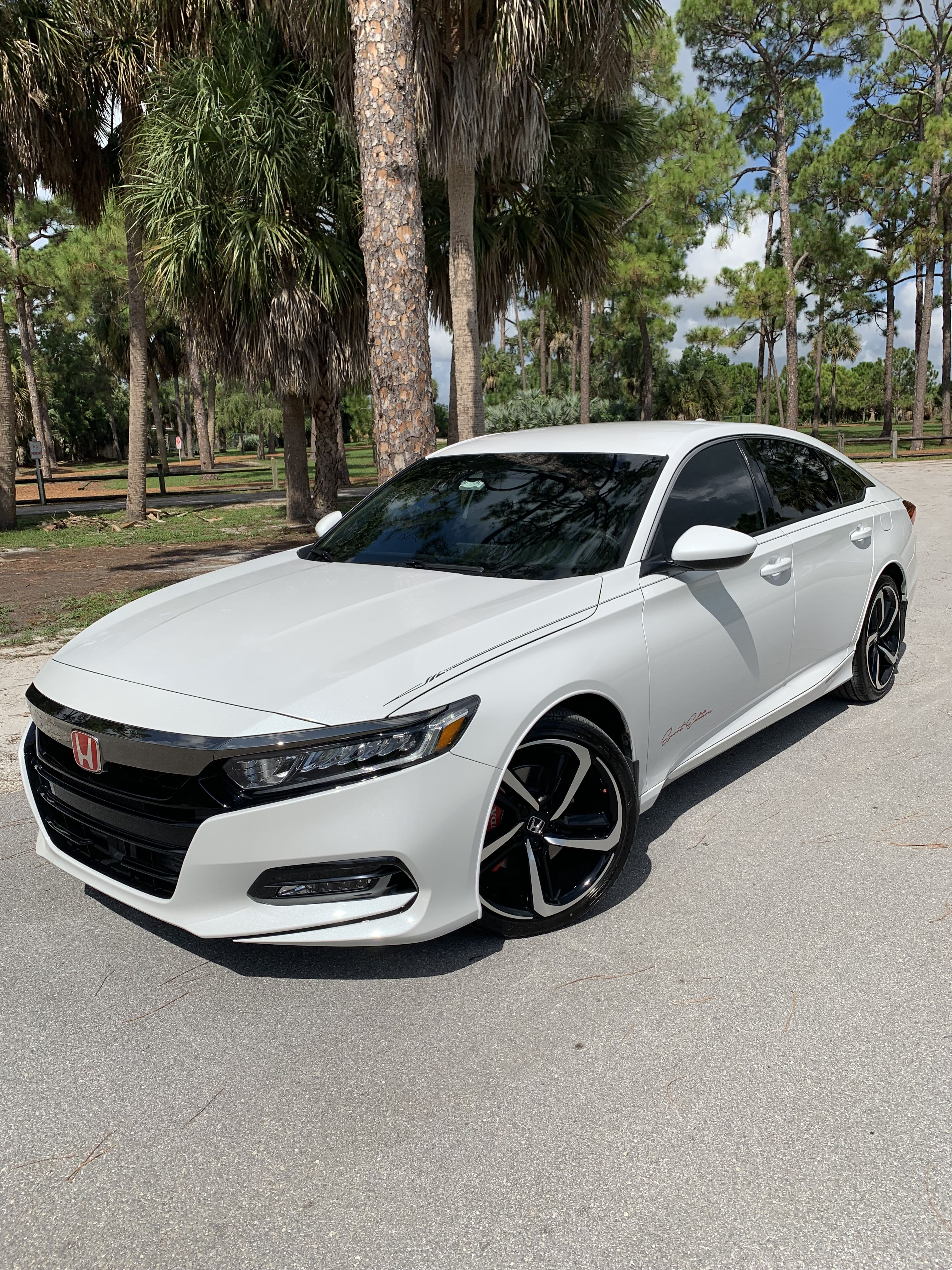 2019 Honda Accord White Honda Coupe Honda Accord Best Cars For Teens