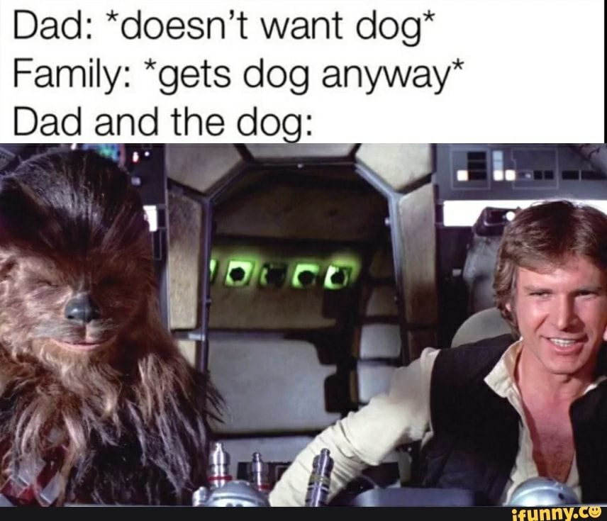 Dad Doesn T Want Dog Family Gets Dog Anyway Dad And The Doo Ifunny Funny Star Wars Memes Star Wars Humor Star Wars Memes