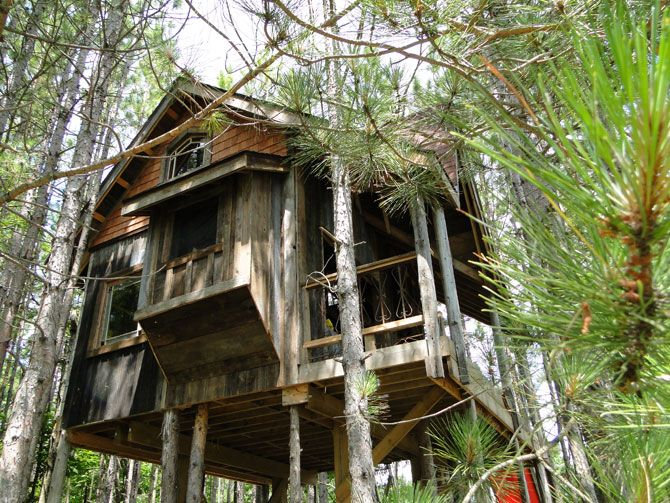Awesome tree house!!!!! Made from reclaimed materials.