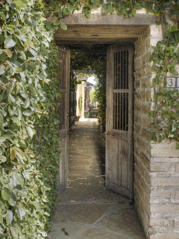 Overgrown doorway.