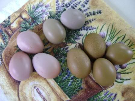 The Olive Egger Thread Writing Pinterest Eggs Keeping Chickens And Coops