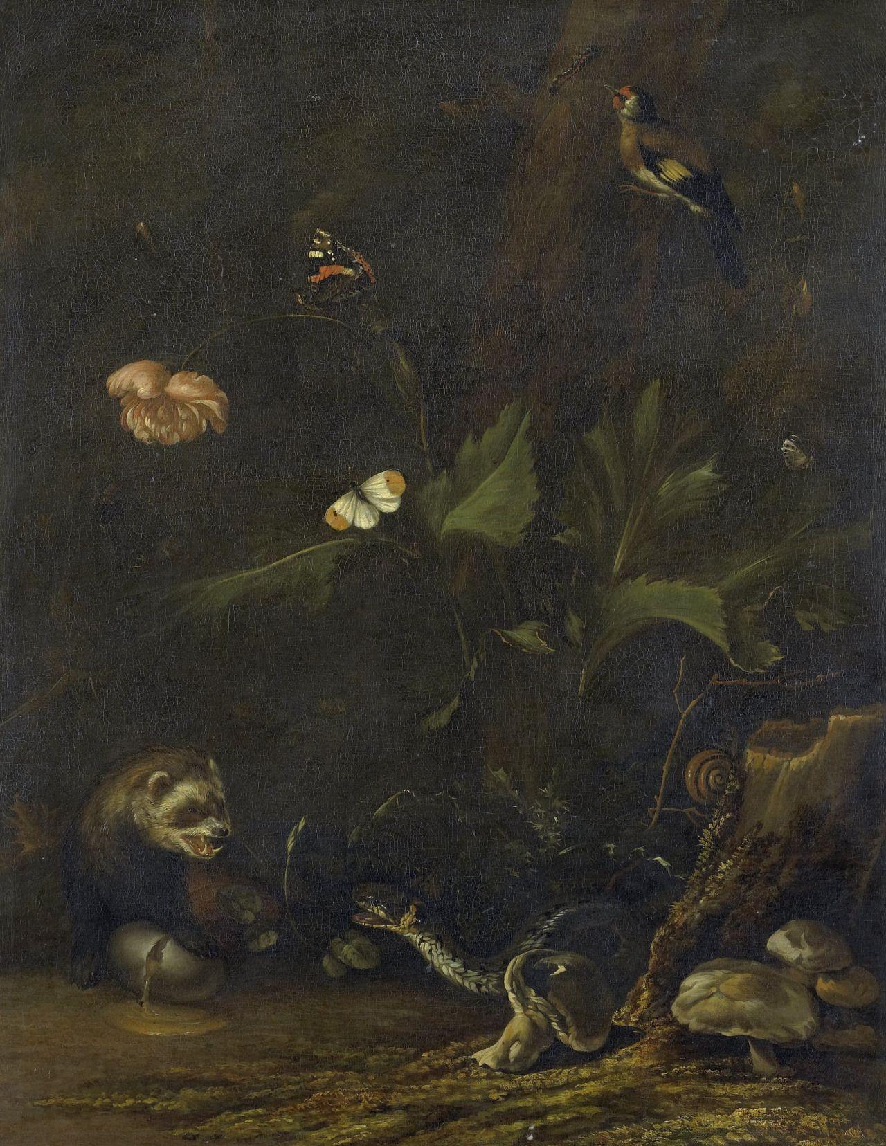 Animals and Plants, 1650-77, Anthonie van Borssom