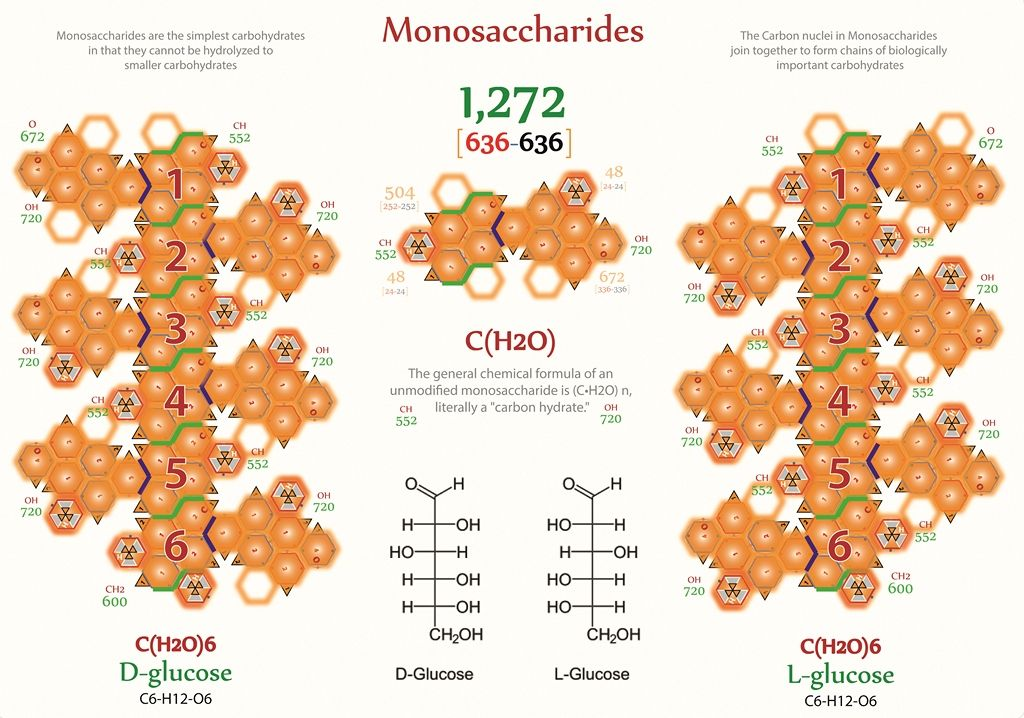 simplest form of sugar Tetryonics 2.2 - Monosaccahrides are the simplest form of sugar