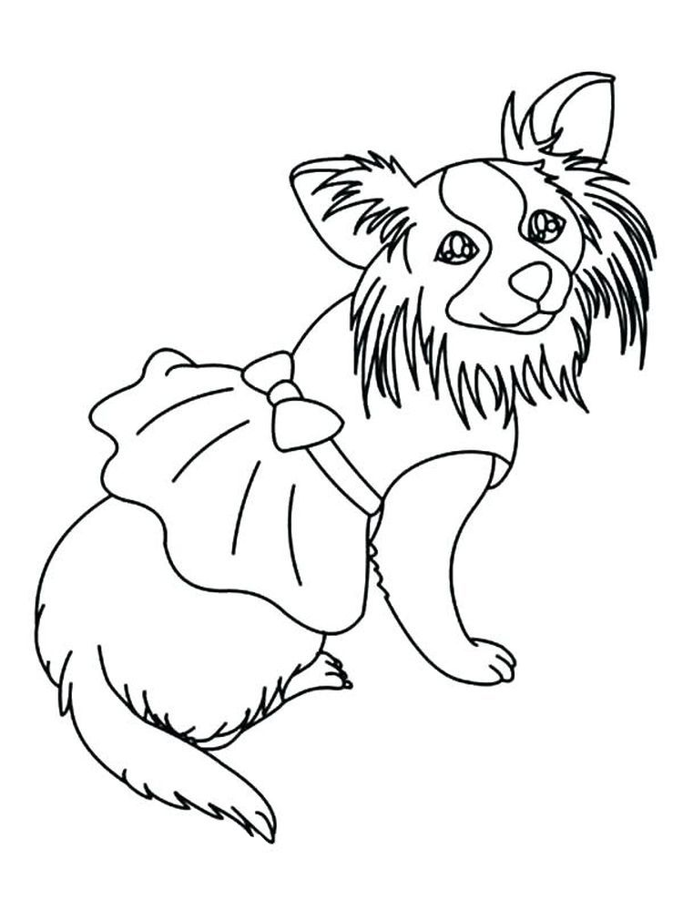Chihuahua Coloring Pages Chihuahua Is Dog Smallest Breed It Is Named Originally From A State In Puppy Coloring Pages Dog Coloring Page Animal Coloring Pages