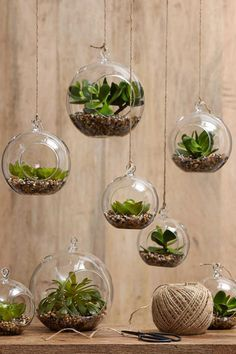 15 Phenomenal Indoor Herb Gardens Home Garden Decor Ideas