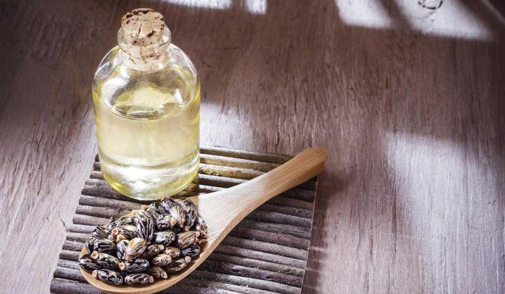 فوائد شرب زيت الخروع للحامل Castor Oil Castor Oil Benefits Oils