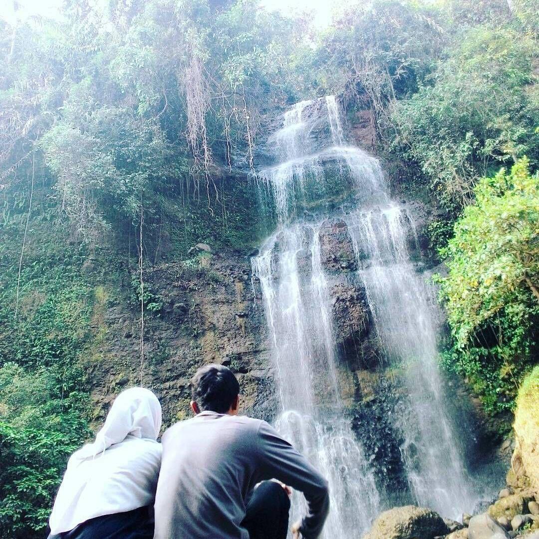 Kebun Karet Di Jawa Timur