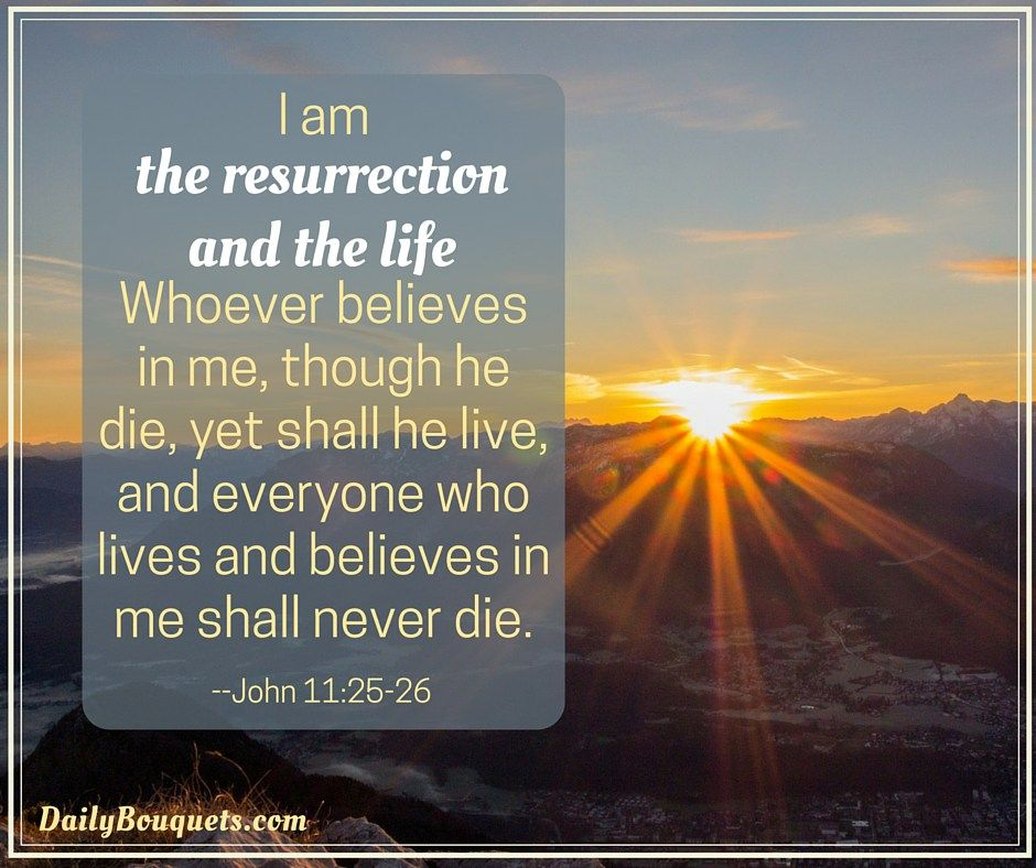 25 Easter Bible Verses and Quotes | Bible verses quotes, The o ...