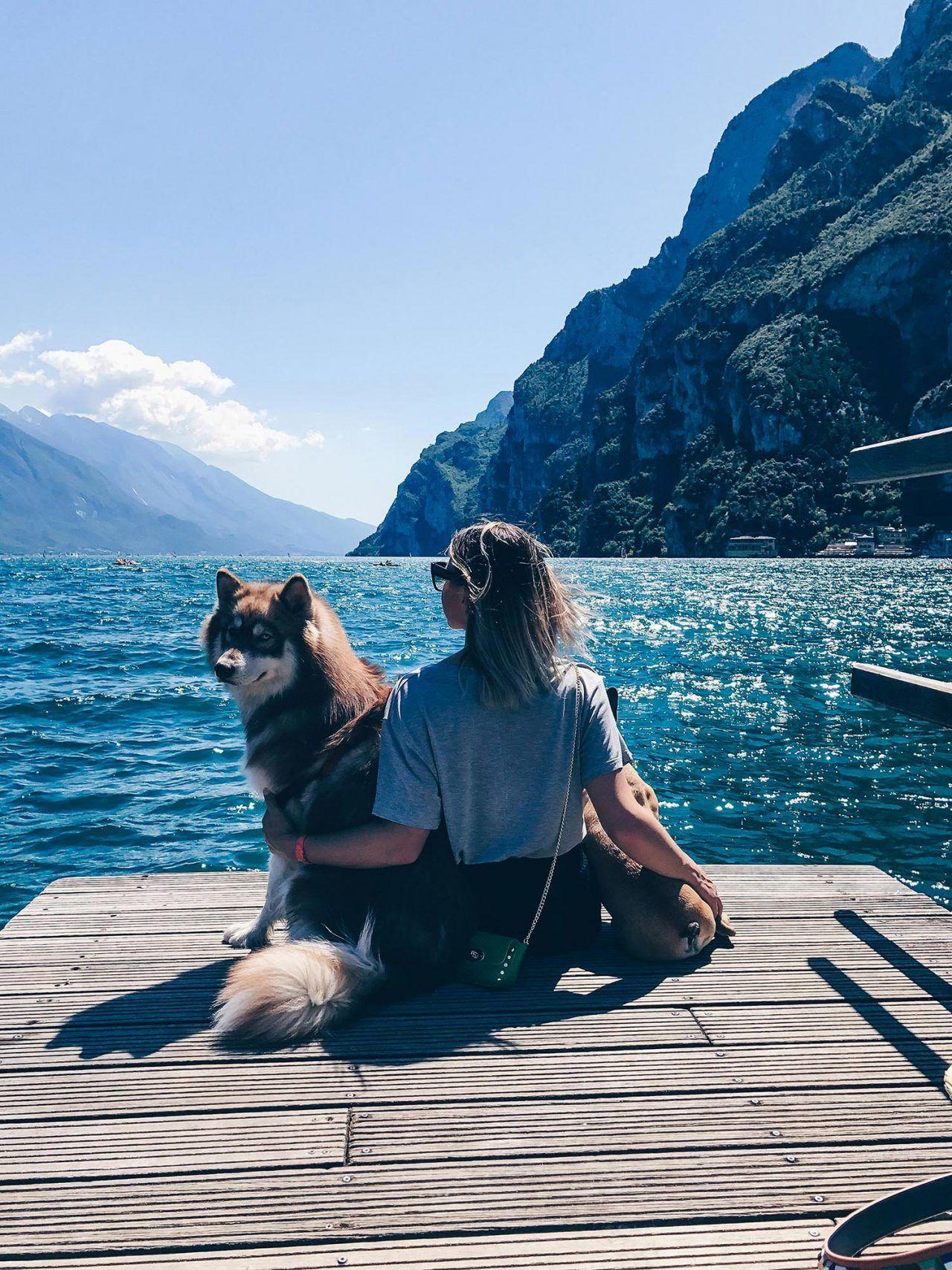 Meine Tipps Fur Einen Urlaub Mit Hund Am Gardasee Urlaub Mit Hund Gardasee Hund Reisen
