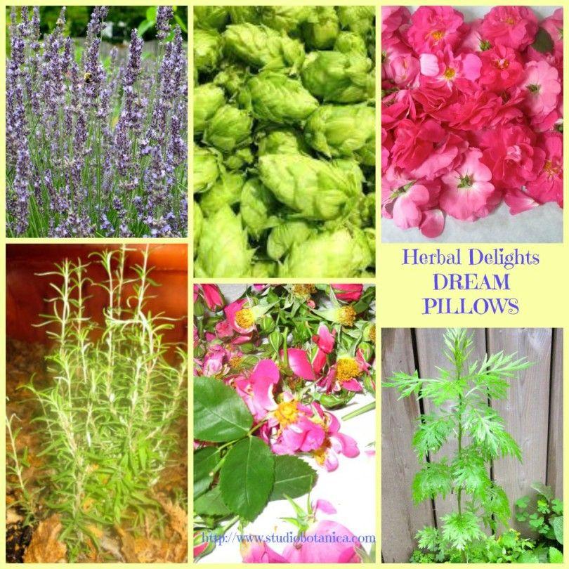 DIY Herbal Dream Pillows | gardening & homesteading