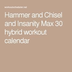 Hammer and Chisel and Insanity Max 30 hybrid workout