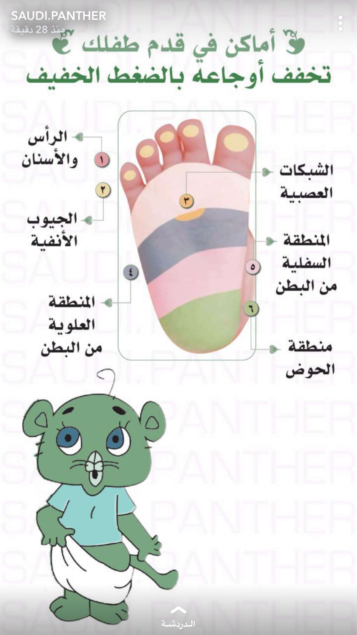 Pin By Lassouedslaheddine On Crafts Baby Health Baby Education Kids Education