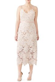 7ee0a1306db2 Rose Lace Frida Dress by CATHERINE DEANE