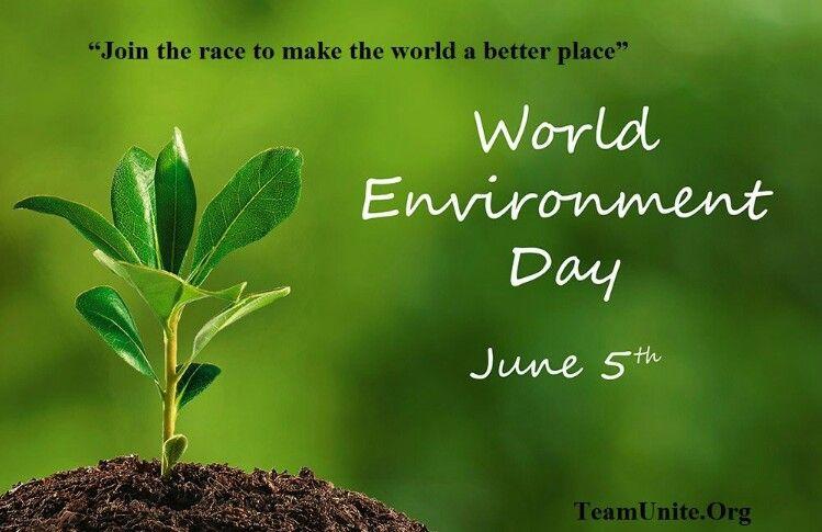 World Environmental Day Environment Day World Environment Day Environment
