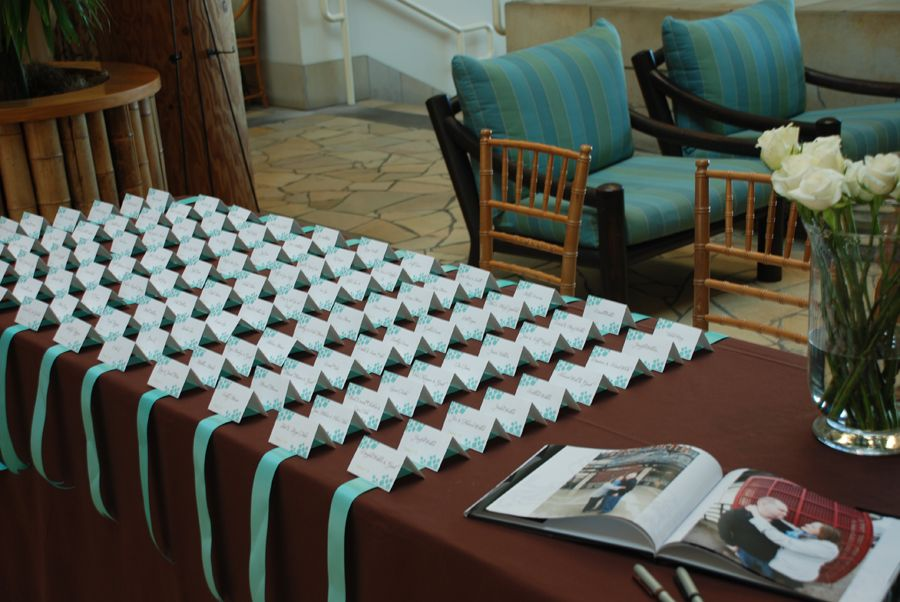 Chocolate Brown Tiffany Blue Seating Cards