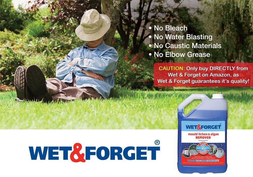 Clean algae moss etc off walls and patios ,,Wet &
