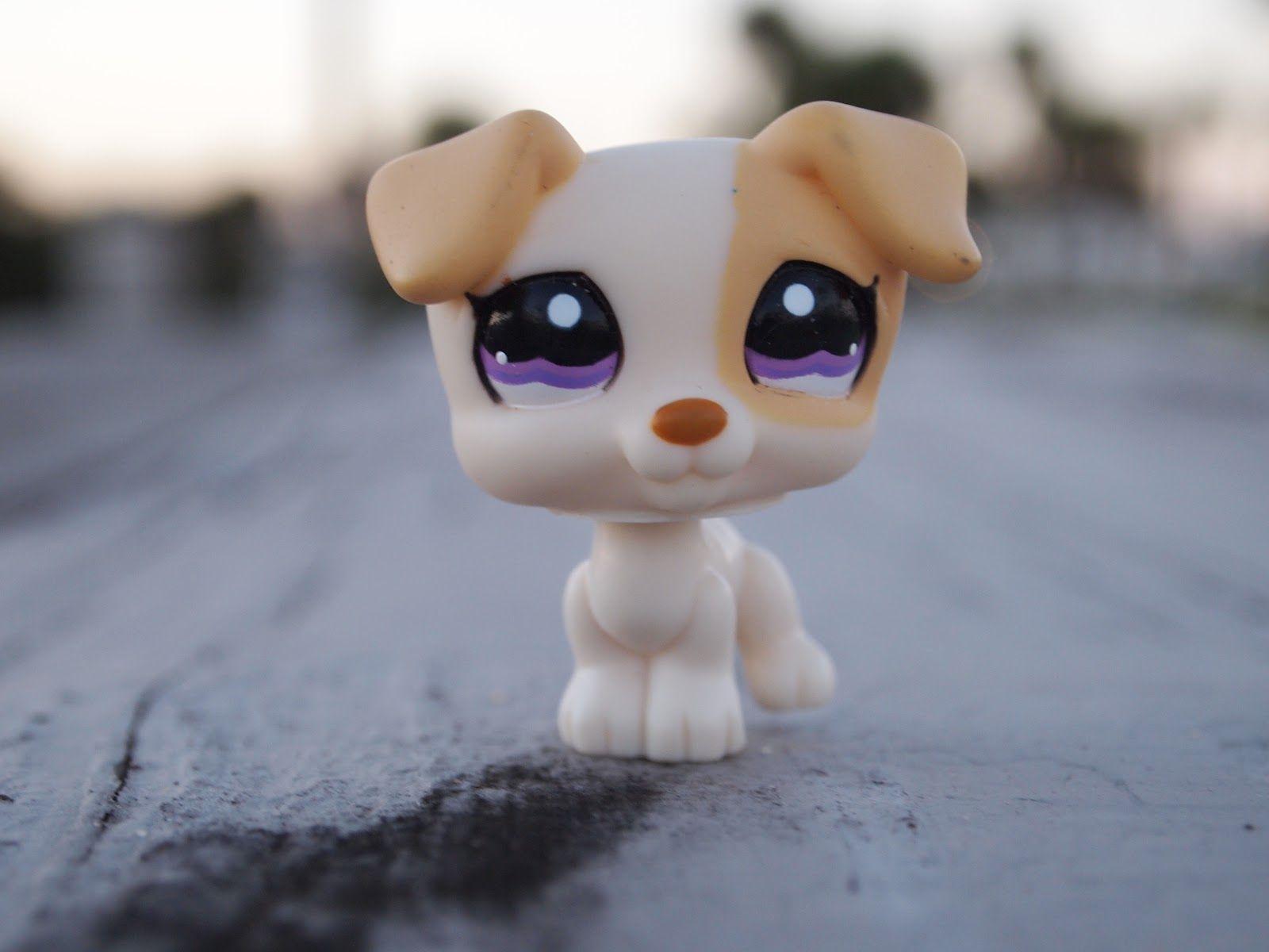 littlest pet shop dog | Leslie | Lps pets, Lps dog, Lps ...