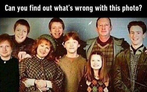 Harry Potter Funny And Ed Sheeran Image Harry Potter Jokes Harry Potter Universal Harry Potter Cast