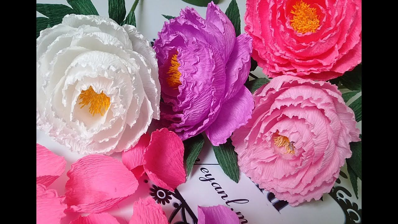 How To Make Tissue Paper Flowers Making Peony Paper Crepe Flower