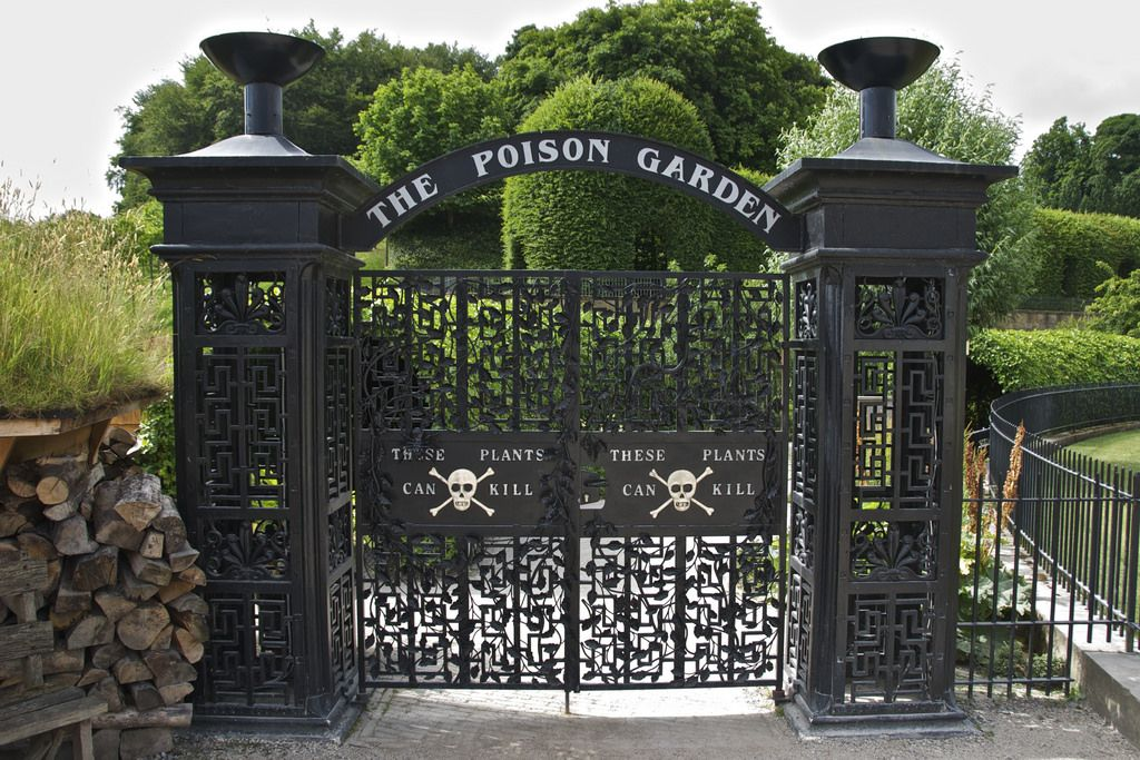 The Poison Garden At England S Alnwick Garden Is Beautiful And Filled With Plants That Can Kill You Poison Garden Deadly Plants Alnwick Castle