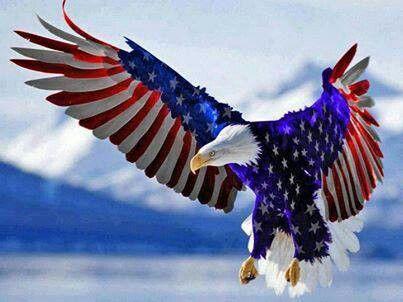 Red White Blue Eagle America Red White Blue Pinterest