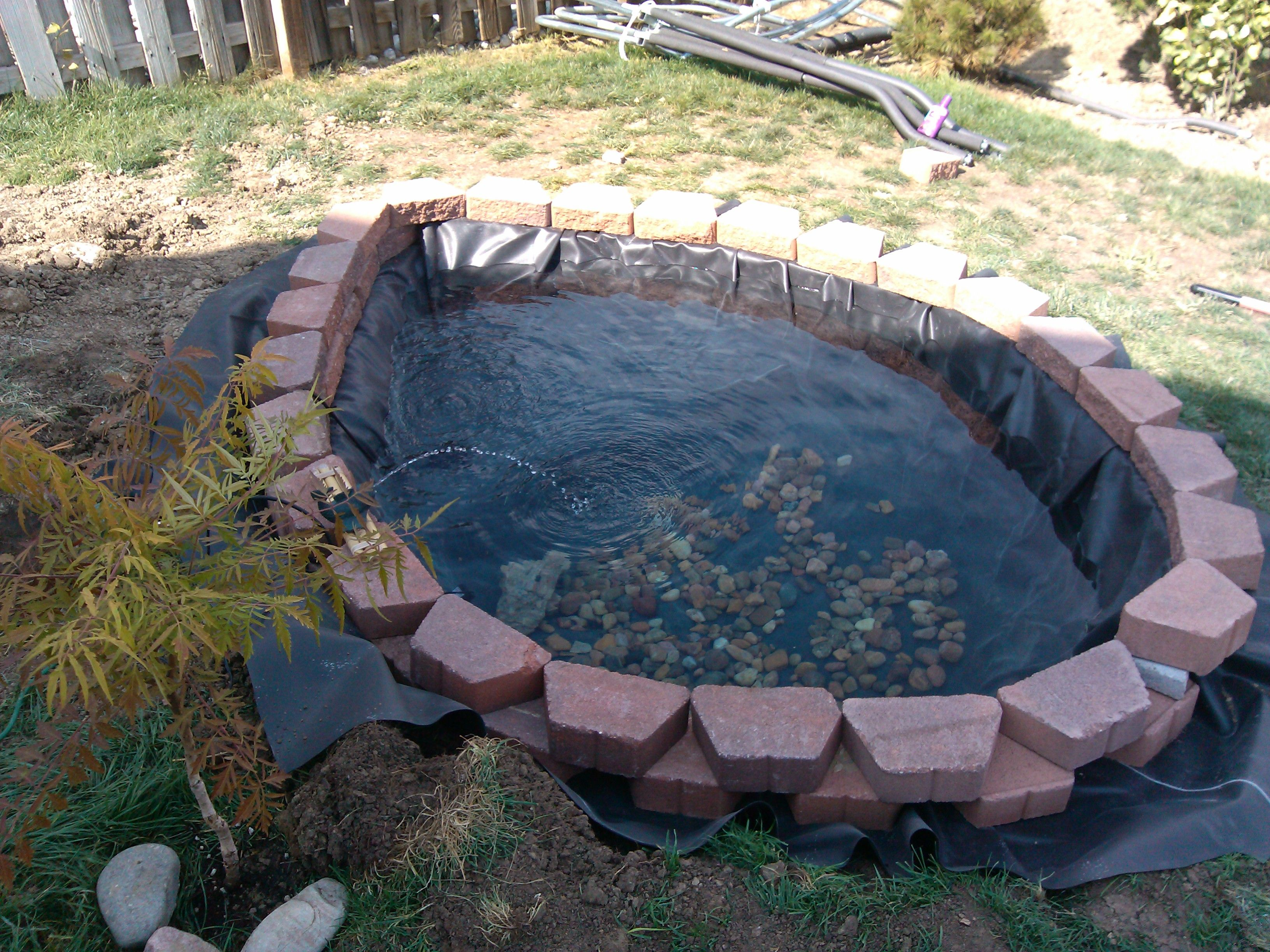 Small fish pond Ponds Created By RCC Pond Services