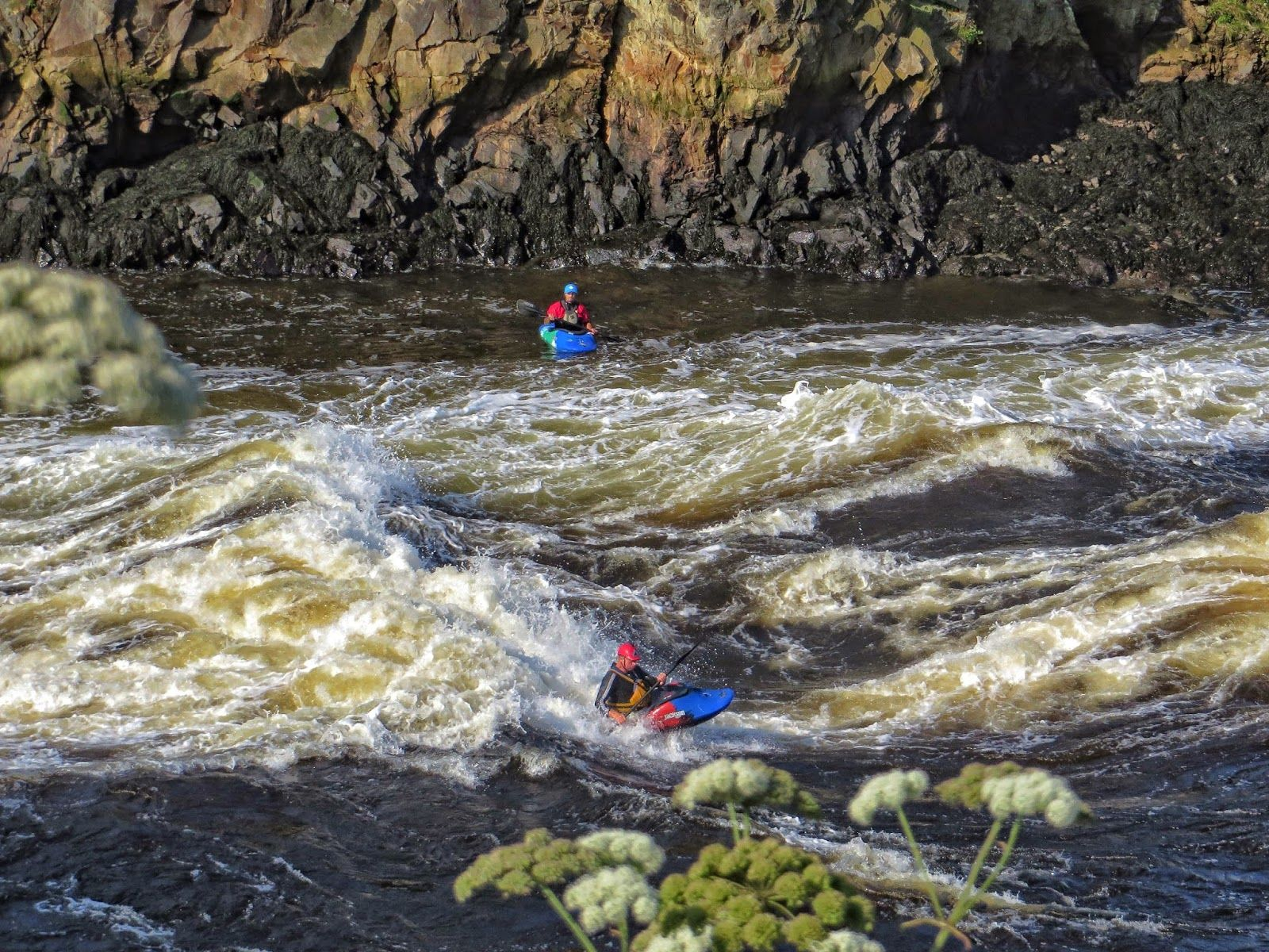 My World In Pennsylvania And Beyond Reversing Falls Kayaking In St John New Brunswick Canada Kayaking Saint John New Brunswick New Brunswick