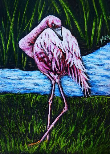Original Bird ACEO Scratchboard Art - FLAMINGO - River Creek Landscape Realism #Realism