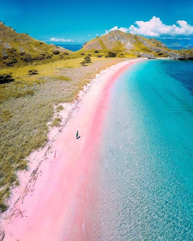 Pink Beach Indonesia Ocean Travel Beach Indonesia Ocean Pink Travel Places To Travel Pink Beach Nature Beach