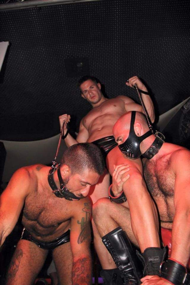 leashed gay videos