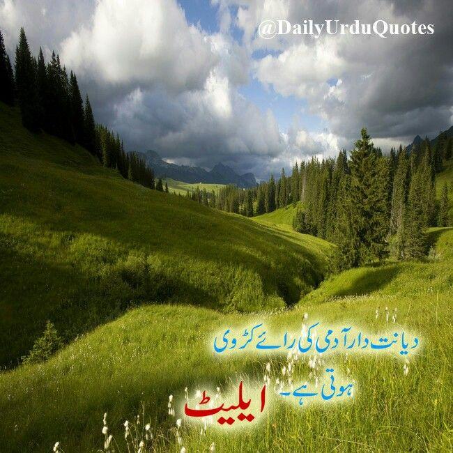 #urduquotes #aqwalezareen #quotes   Urdu quotes
