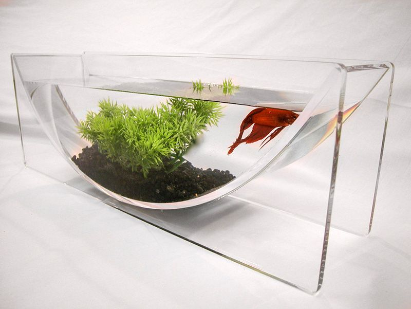 If it 39 s hip it 39 s here the betta bowl modern tabletop for Cool betta fish tanks