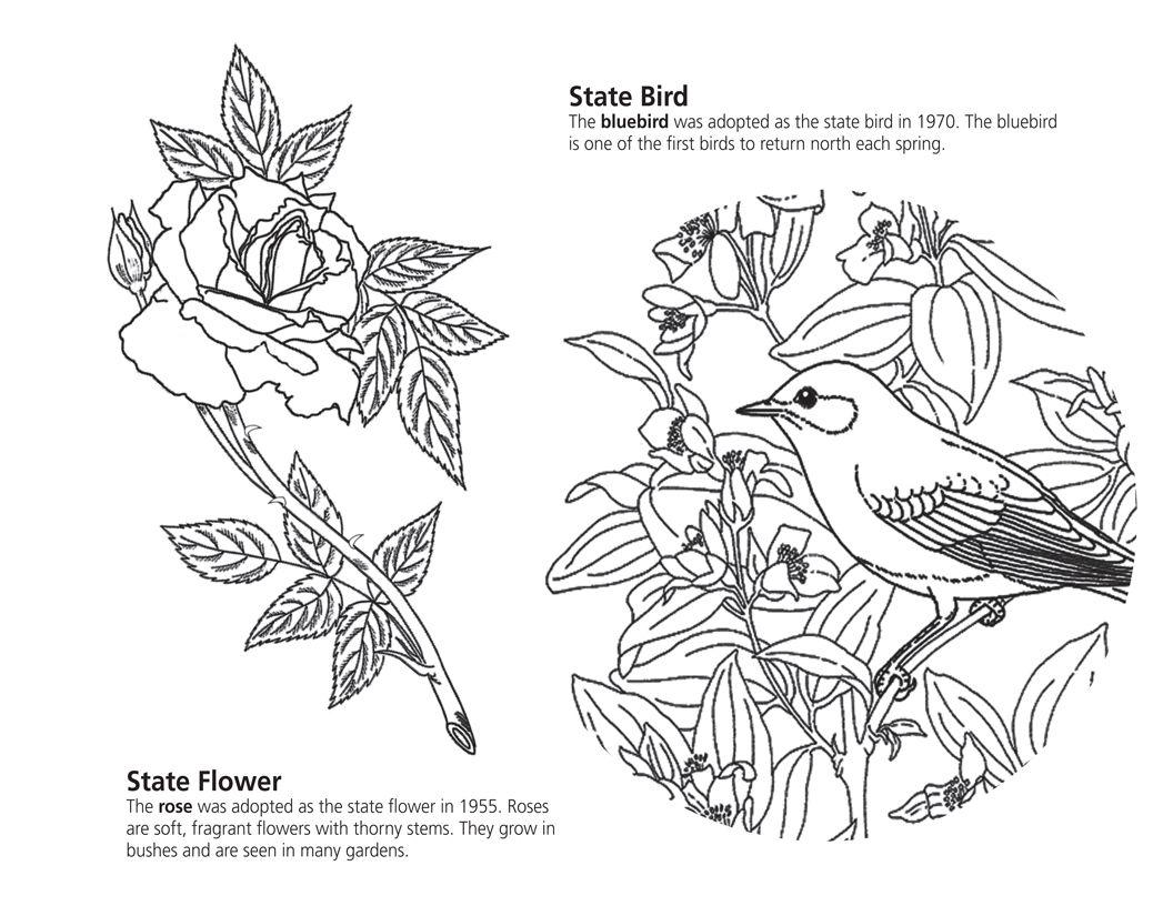Pin By Eva Gubik On Coloring 6