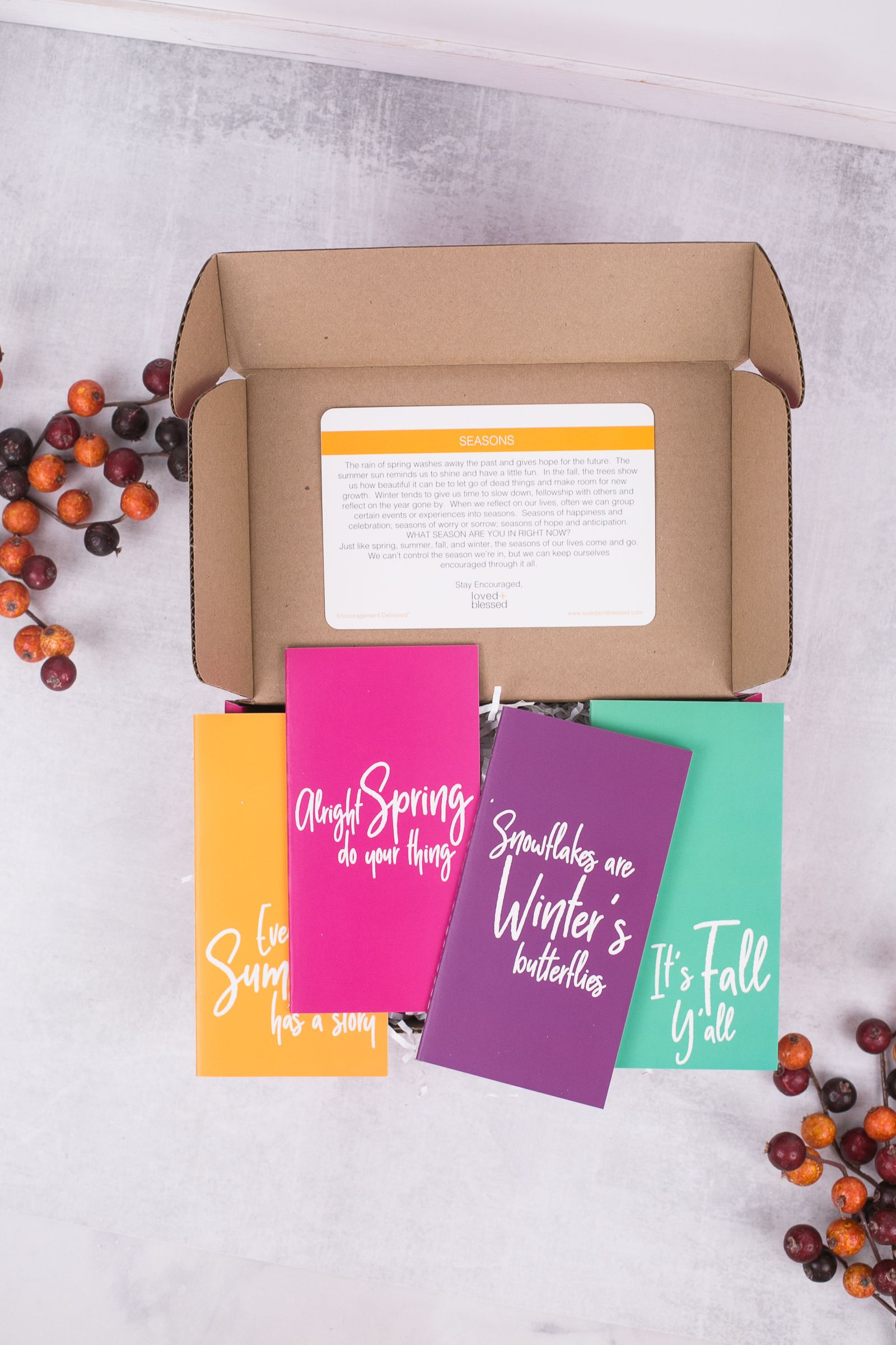 Seasons of Life Box | loved + blessed subscription boxes ...