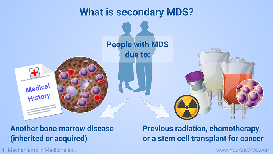 What Is Mds >> Pin On You And Aml