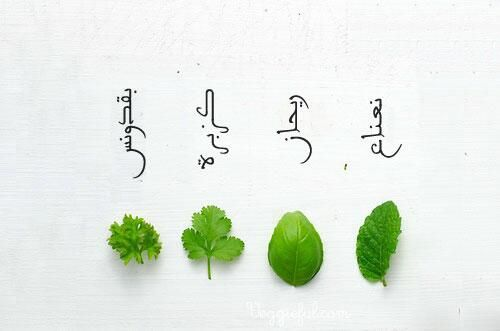 Leafs Left To Right Parsley Coriander Basil Mint Cooking Basics I Love Food Middle Eastern Recipes