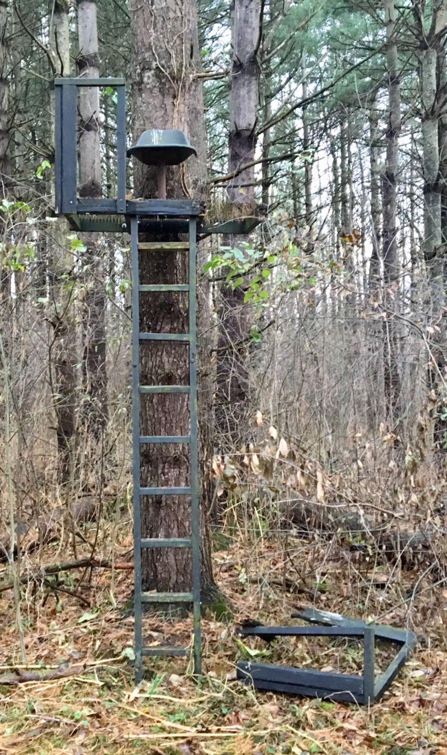 Deer Tree Stands Related Keywords and Suggestions Deer Tree