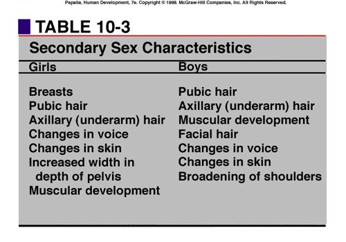 what is a secondary sex characteristic