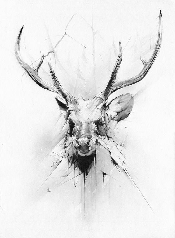 Illustrations By Alexis Marcou Cuded Deer Head Tattoo Stag Tattoo Framed Art Prints