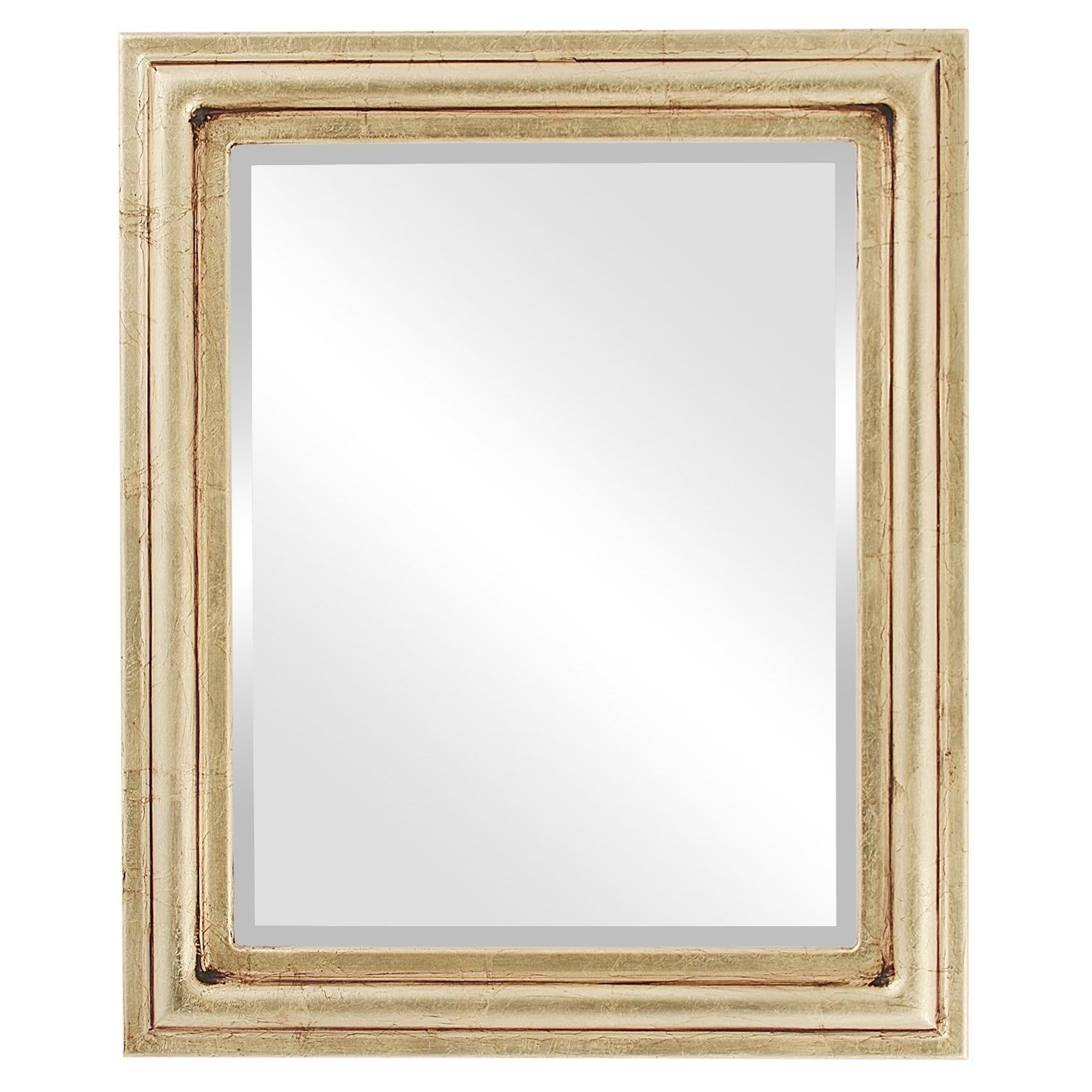 Philadelphia Framed Rectangle Mirror in Gold Leaf (15x19) | Products ...