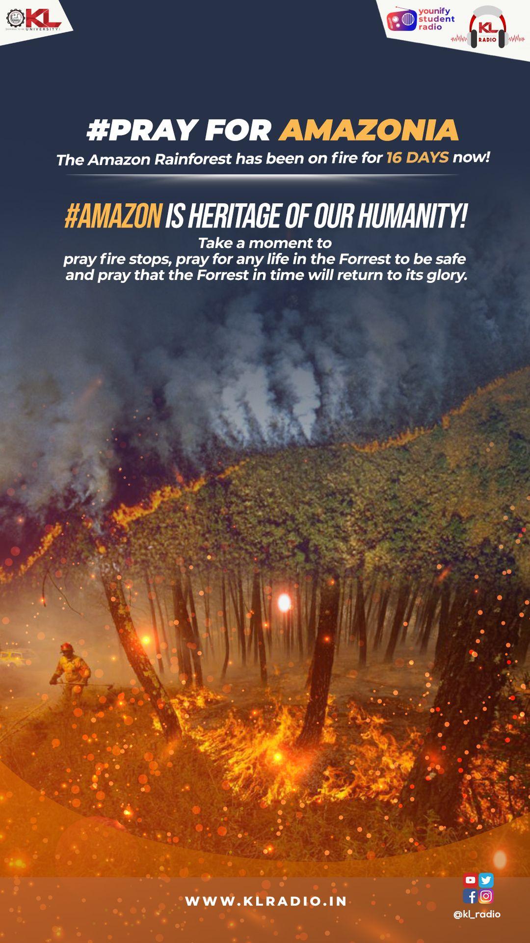 The Amazon Rainforest Is On Fire The Amazon Rainforest Has