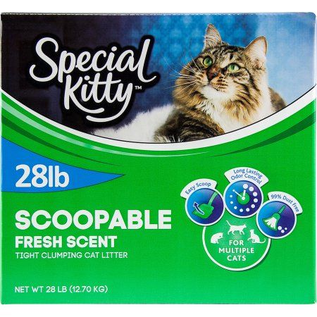 Special Kitty Multiple Cat Clumping Cat Litter 28 Lbs Walmart And