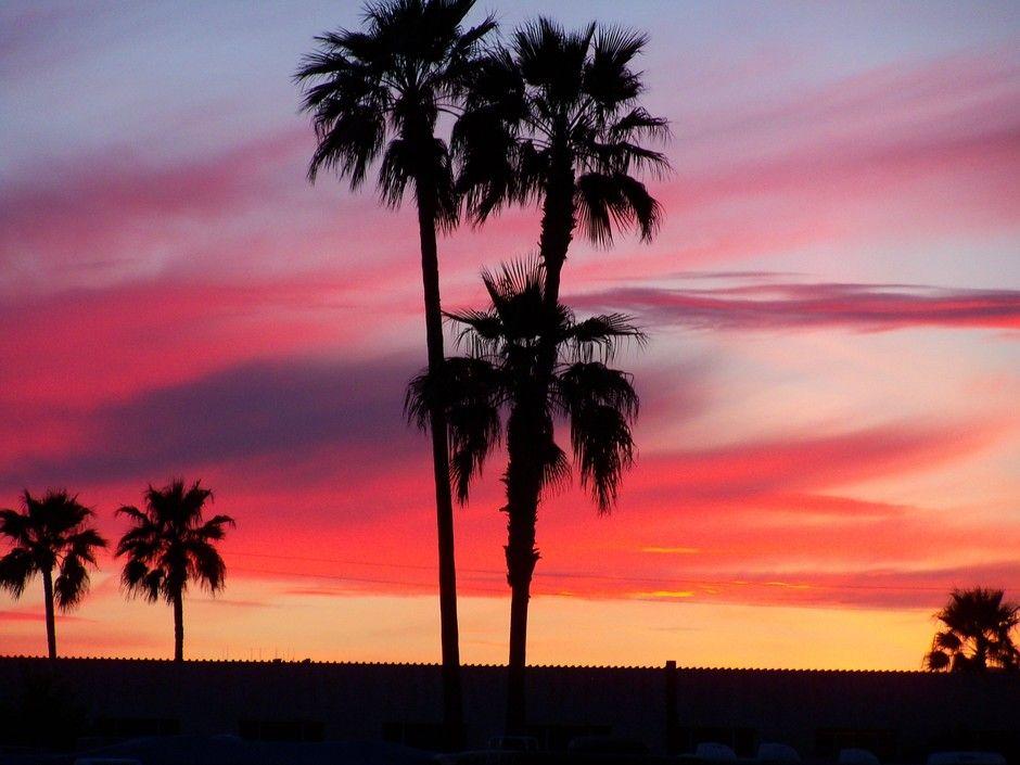 Chandler, AZ | Arizona | Pinterest
