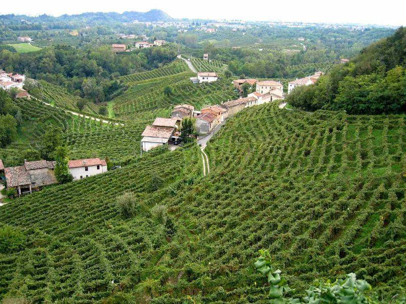 Turismo del vino: Toscana ai vertici, ma la Sicilia è la regione più sognata