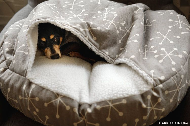 How To Make A Diy Burrow Dog Bed Diy Dog Bed Dog Bed Diy Cat Bed