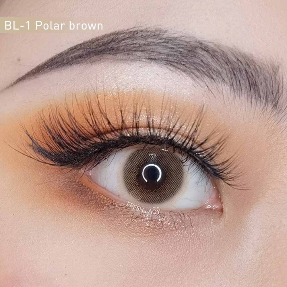 Freshlady Polar Lights Series Contacts Lenses Brown Gray Yellow Green Color Contacts Grey Contacts Colored Contacts Contact Lenses Colored