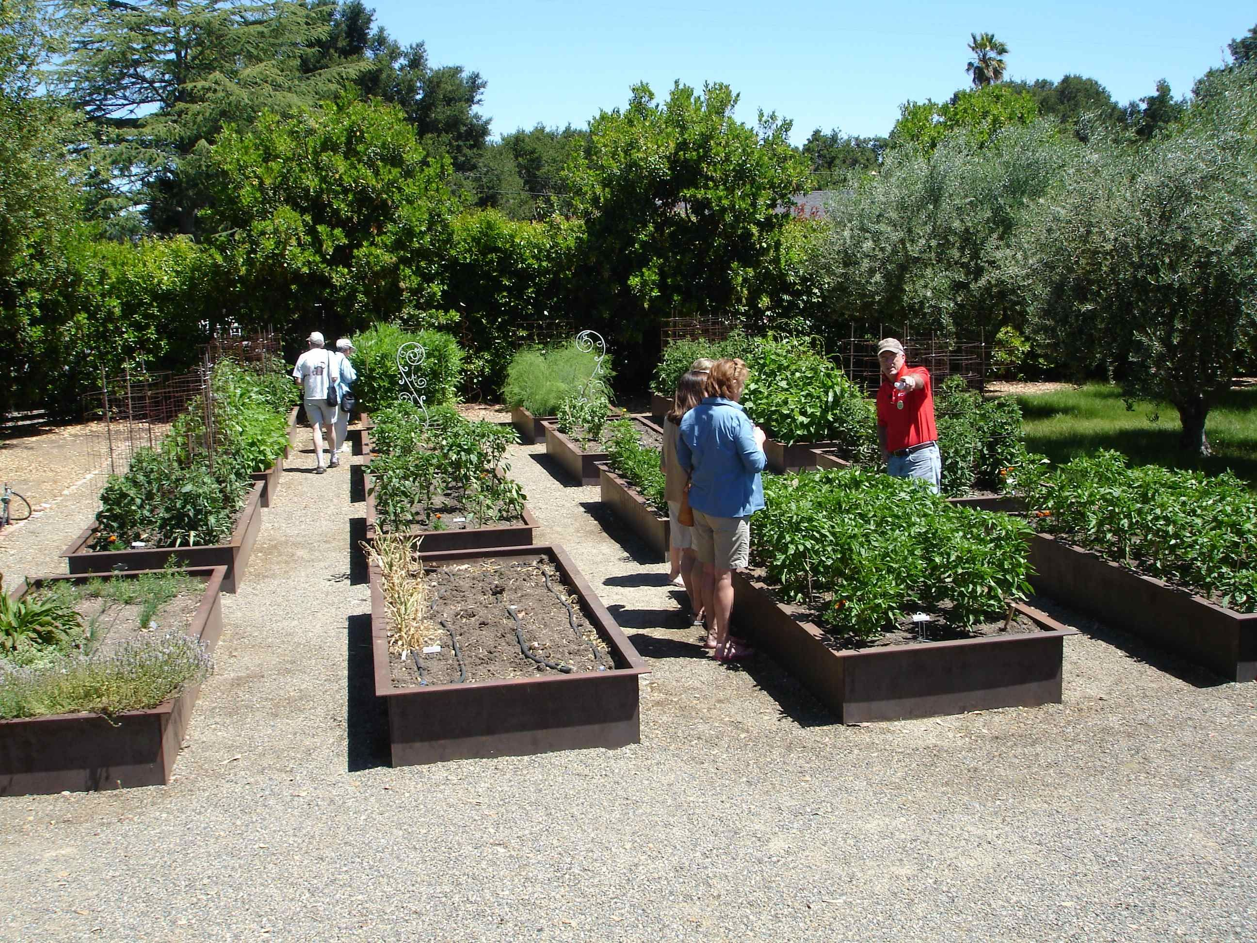 berms are like large raised beds they generally are eighteen to