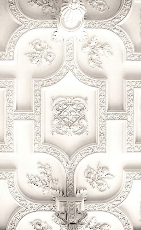 Plaster Ceiling Design + Architectural Mouldings Today's post is a continuation of the series on mouldings. I have so many beautiful images, that I realized that I needed to break it up. Since I started with plaster ceiling design, this is what I'm going to focus on for today. Some of you may recall that I've already done a post\u2026 #gesso